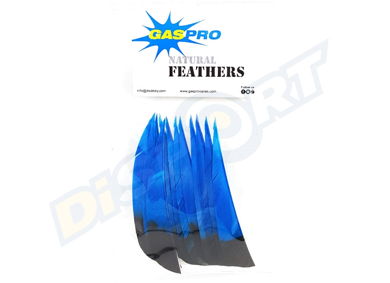 GAS PRO NATURAL FEATHERS 4'' SHIELD CONF. 50 EAGLE VERSION